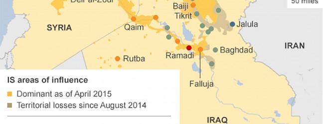 Scusa ma tu hai capito cos'è l'ISIS?