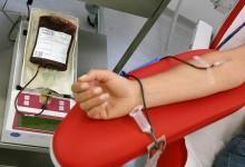 Studenti donatori di sangue
