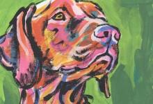 Quel lungo giorno da cani – Federico Angriman