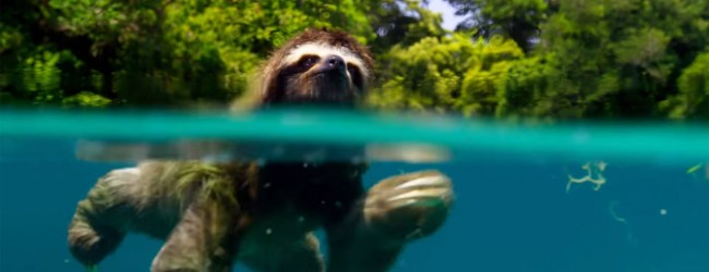 Planet Earth II, the record breaking documentary