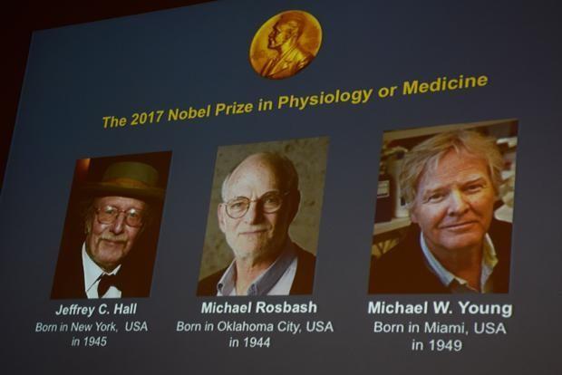Il Premio Nobel per la Fisiologia o la Medicina 2017