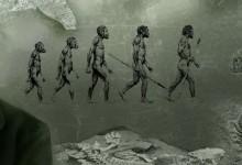 Il brigantino di Darwin: questione di naso
