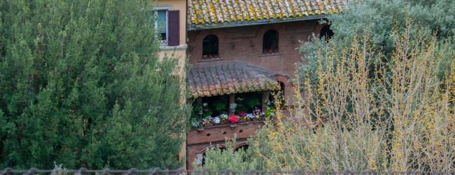 IJF18 Day #4: Perugia's Conclusions