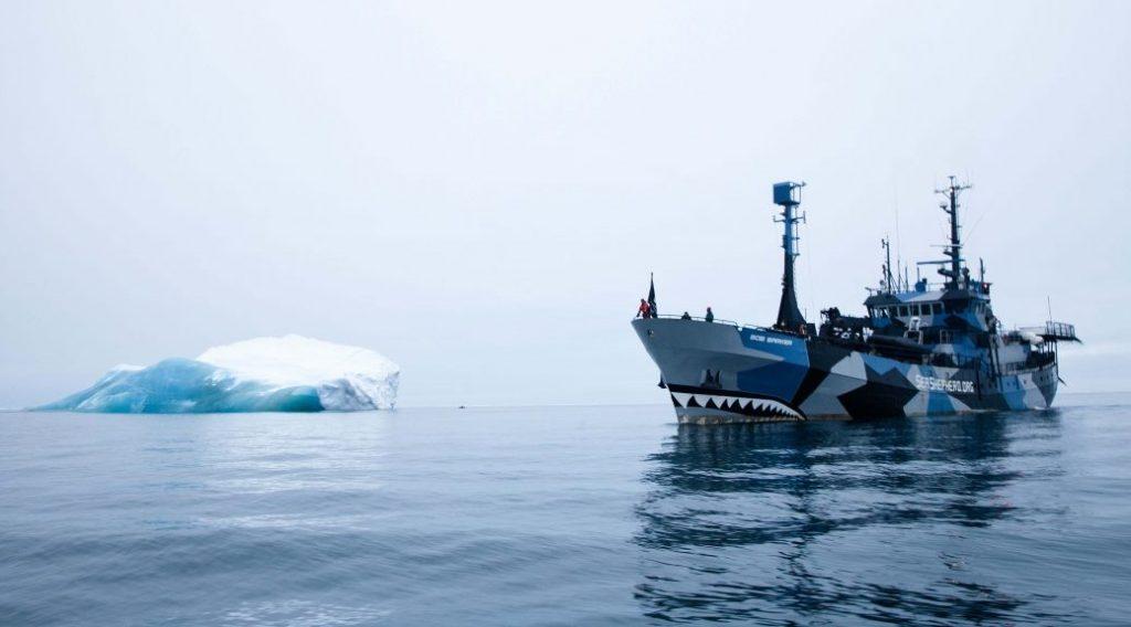sea-sheperd-nave
