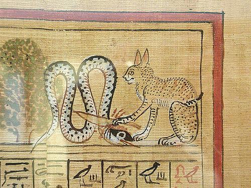 gatto_medioevo_storia_arte_serpente